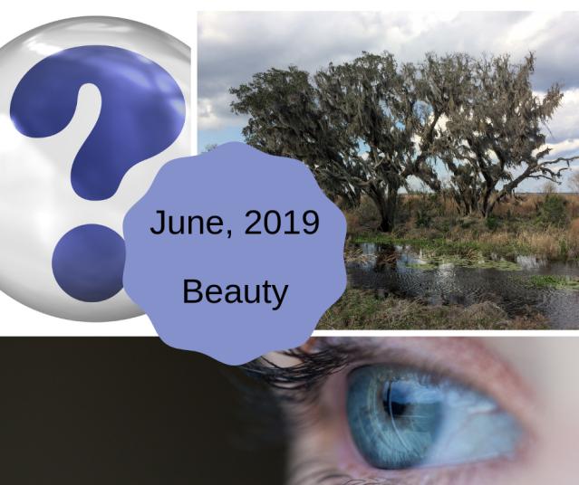 June 2019 theme